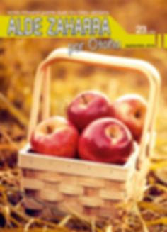 Aldezaharra_23-portada.jpg