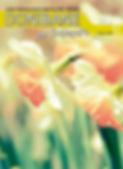 DONIBANEpor_22-portada.jpg