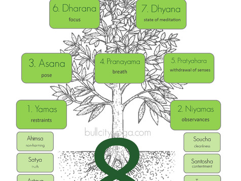Eight Limbs of Yoga: Yoga is More Than Just Poses