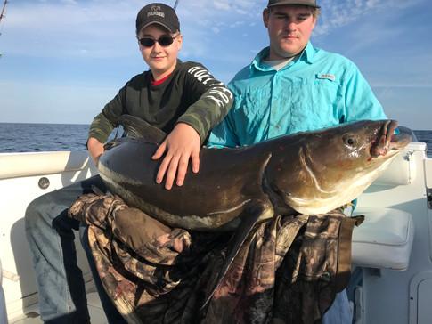 76 pound cobia