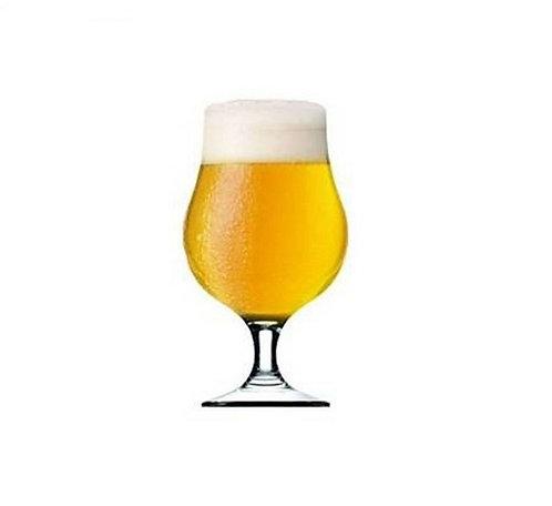 Copa Cerveza Dublin