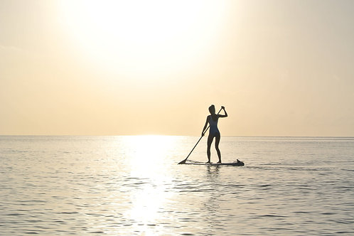 RENT A SUP PADDLE BOARD