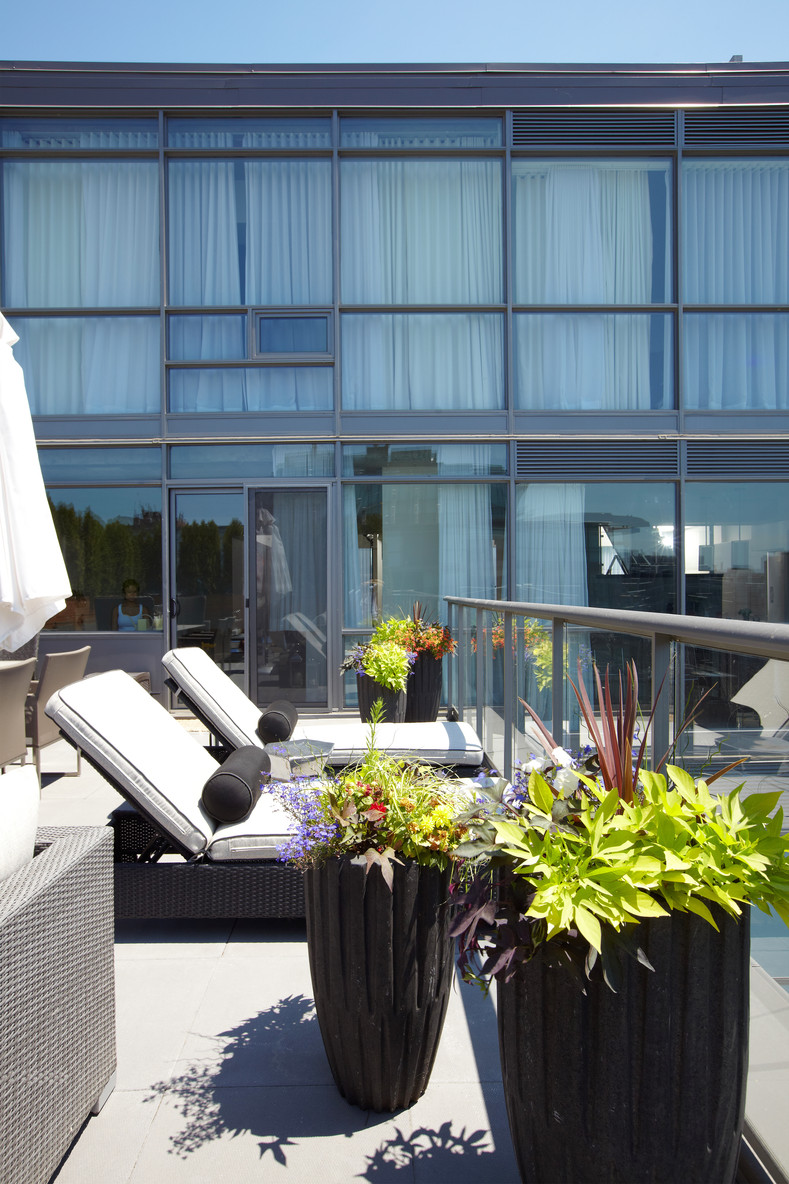 Thompson Penthouse