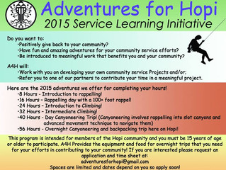 Service Learning Initiative