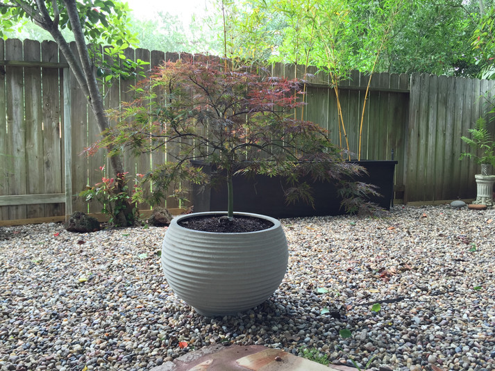 The first Asian-inspired zen section in the backyard