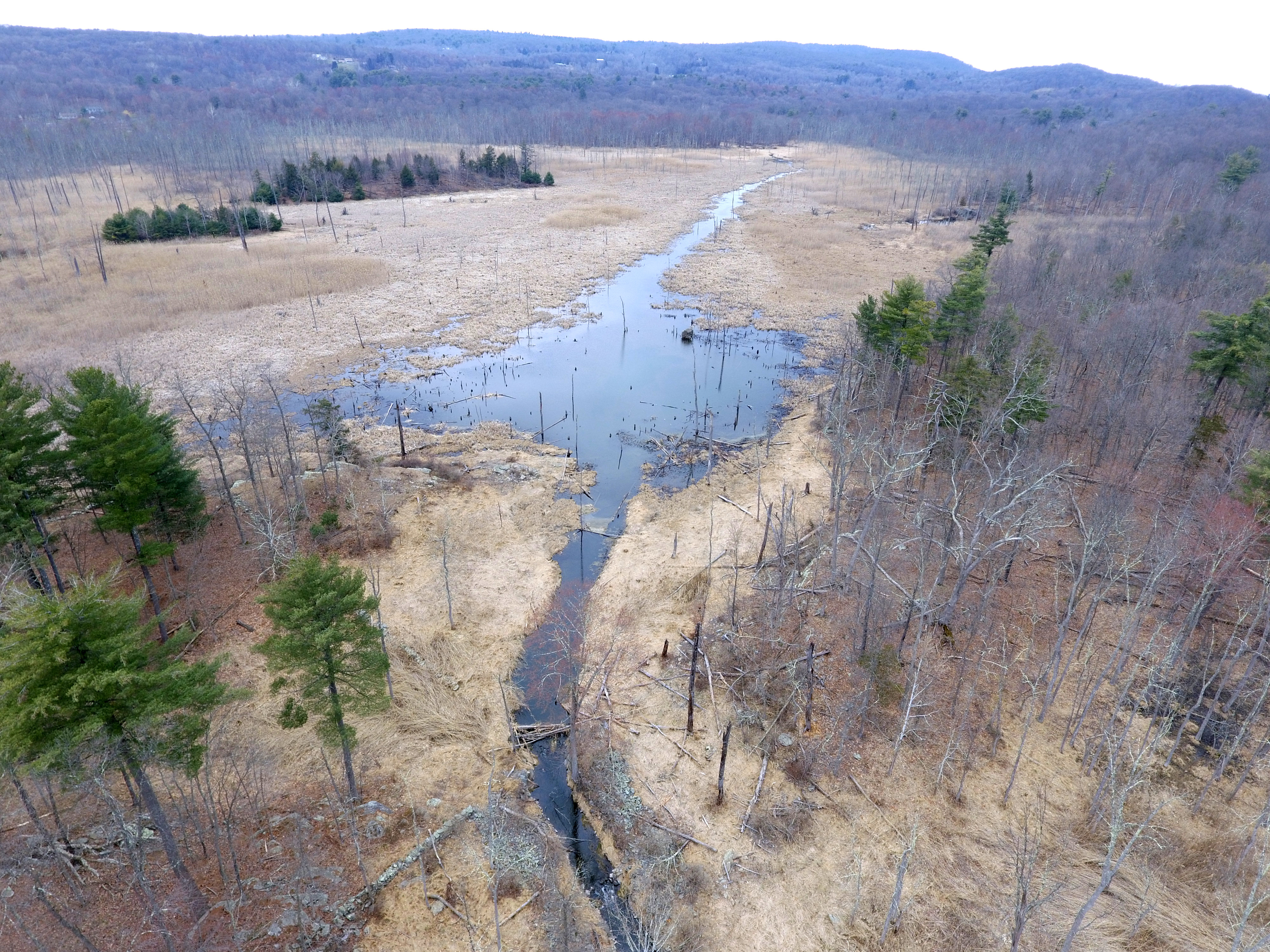 Consulting for Private Landowners