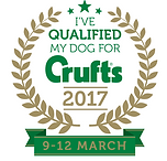 qualified to crufts 2017