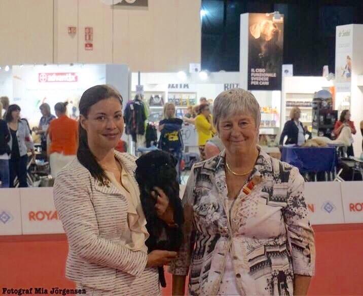 Chippichawas Miss Concorde Junior World Winner 2015 WDS 2015 Milano Judge Ann Ingram