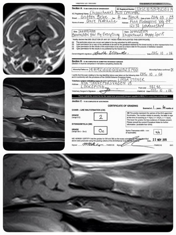 MRI results SM0! :)