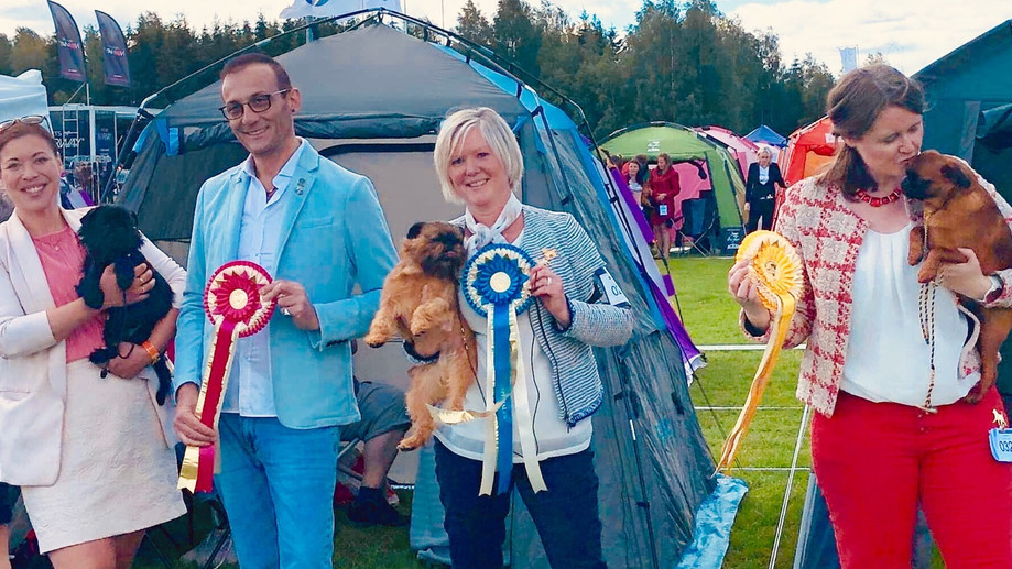 Norwegian Griffon club specialty 2019