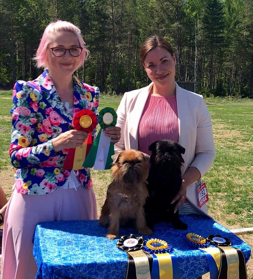 Nordic Dog Show in Gimo