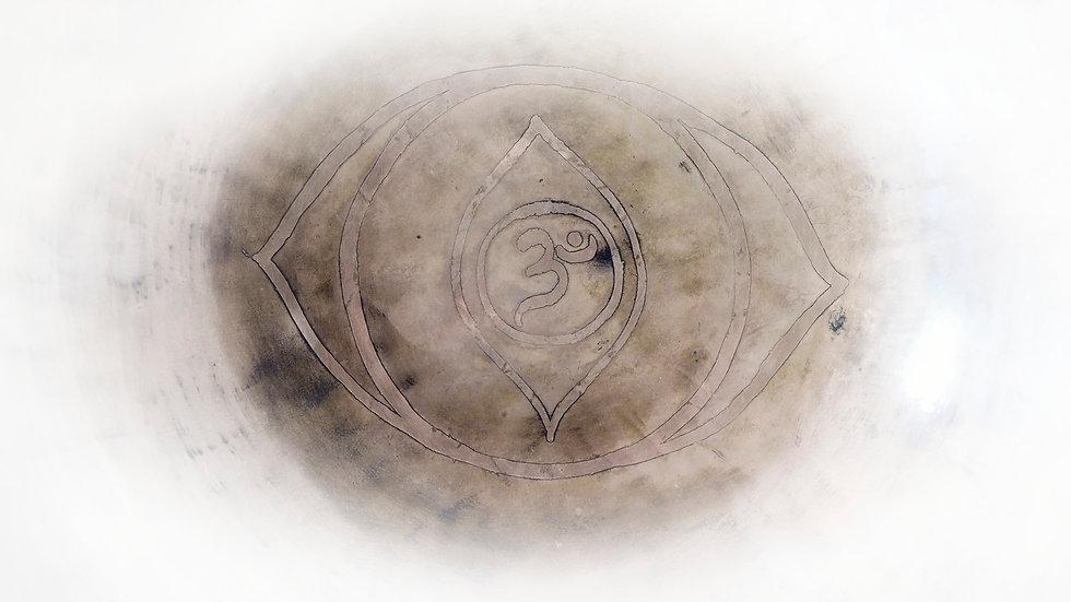 L1000567v1.jpg