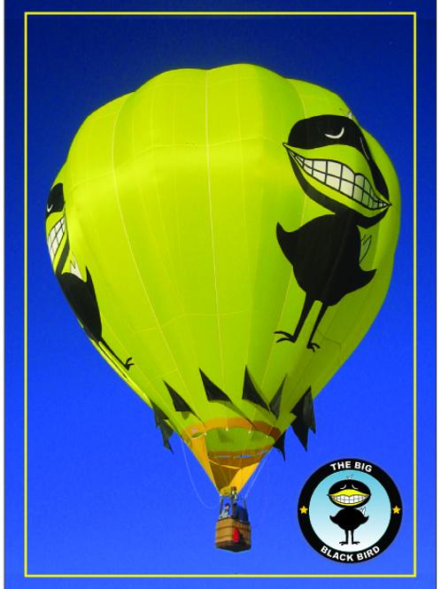 The Big Black Bird Trading Card - 2013 Edition