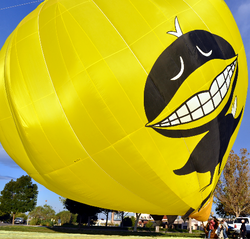 Black Bird Standing up Balloon Fiesta 10_2010_edited