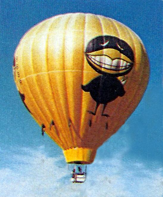 Black Bird in flight 1981