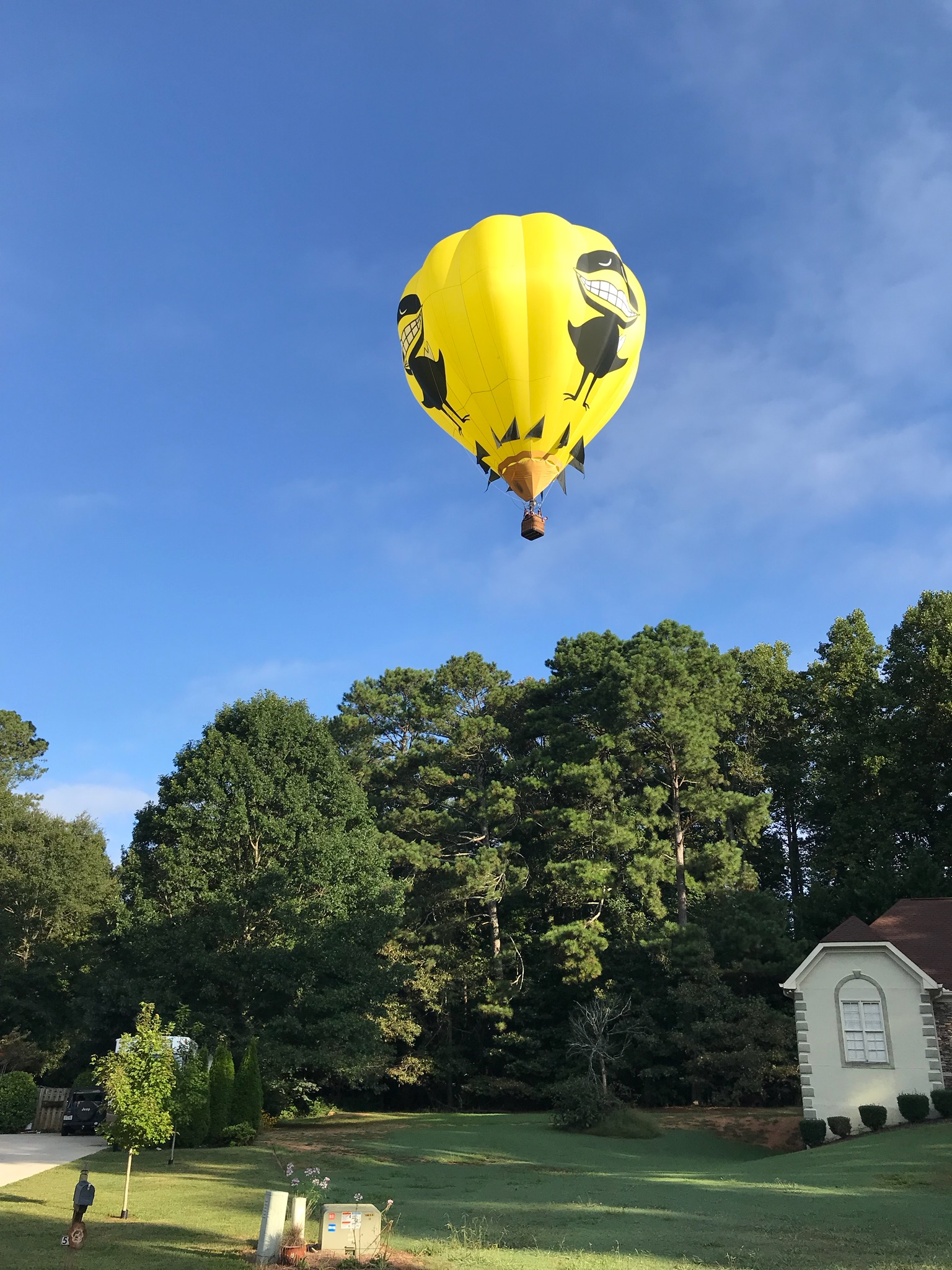 Flight Over North Atlanta 2018