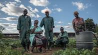 Workers in Luanshya, Zambia, Africa