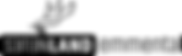 NLE Logo 2020 schwarz.png
