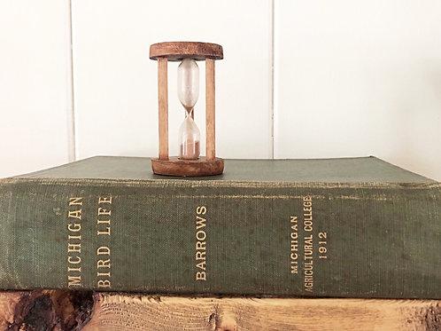 1912 Old Book- Michigan Bird Life