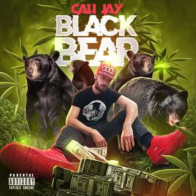 Black Bear .JPG