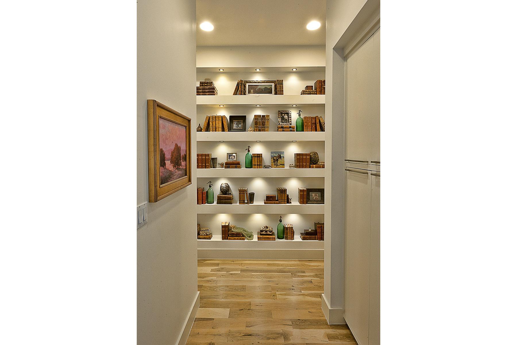 CatMountain-shelves