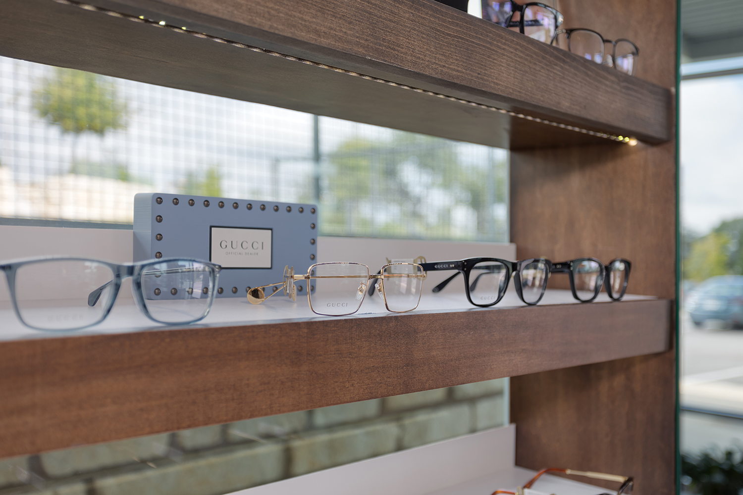 Luxe Vision Frames Detail