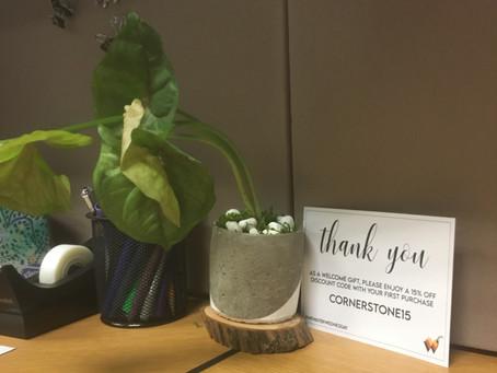 Cornerstone Loves Welcome Plants!