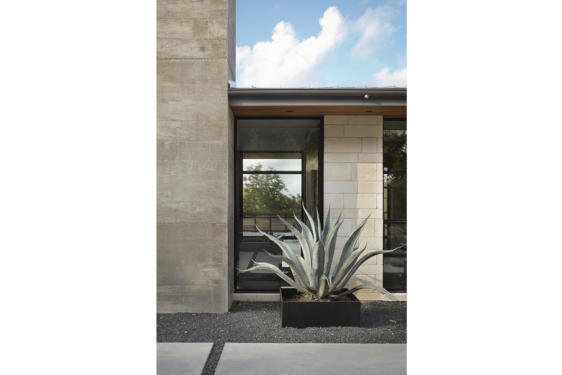 hill-country-residence-agave
