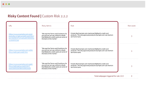 Risk Detection_Search, Scan & Monitor.png