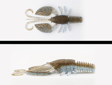 119_spawning_shrimp .jpg