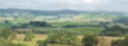autumnhillsnarrow3JPGstrokesriver.jpg