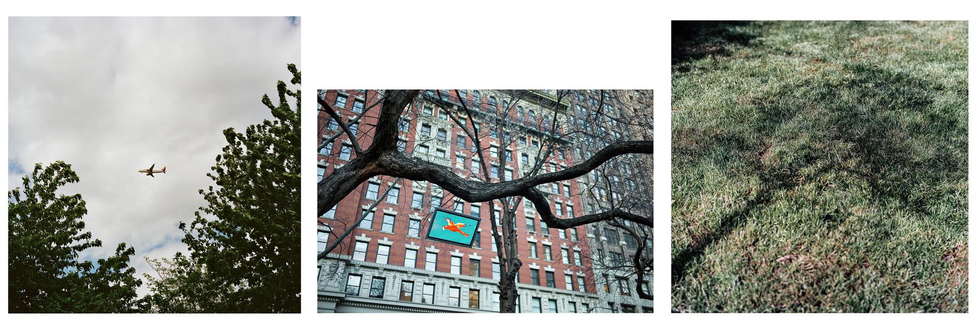 Green City - L'empreinte carbone - Carbon Footprint