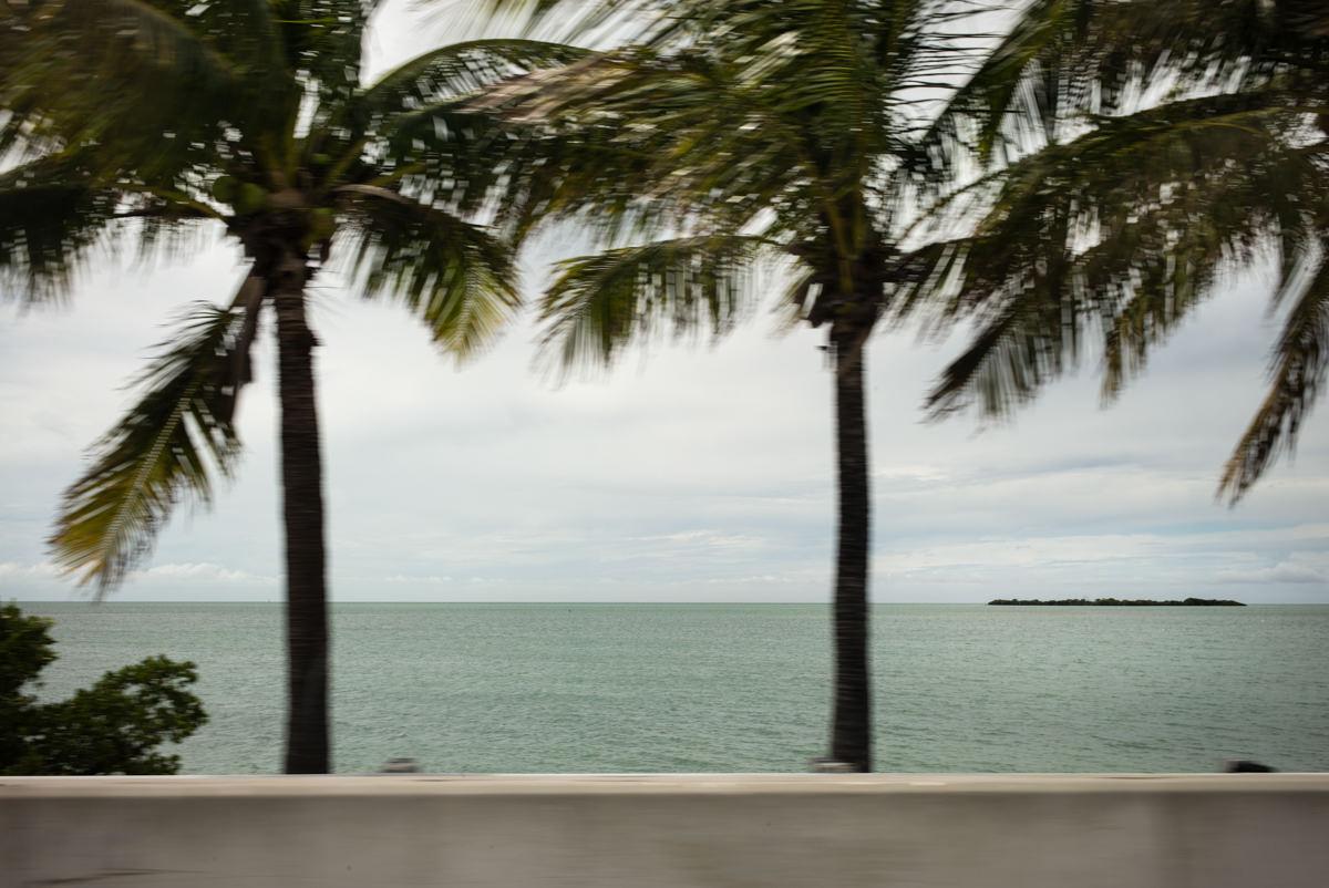 L1000332- Florida 20