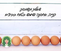 שאלות ותשובות: קנייה, אחסנה ושימוש בטוח בביצים