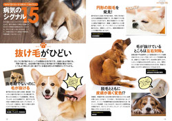 愛犬が長く幸せに暮らす30のコツ