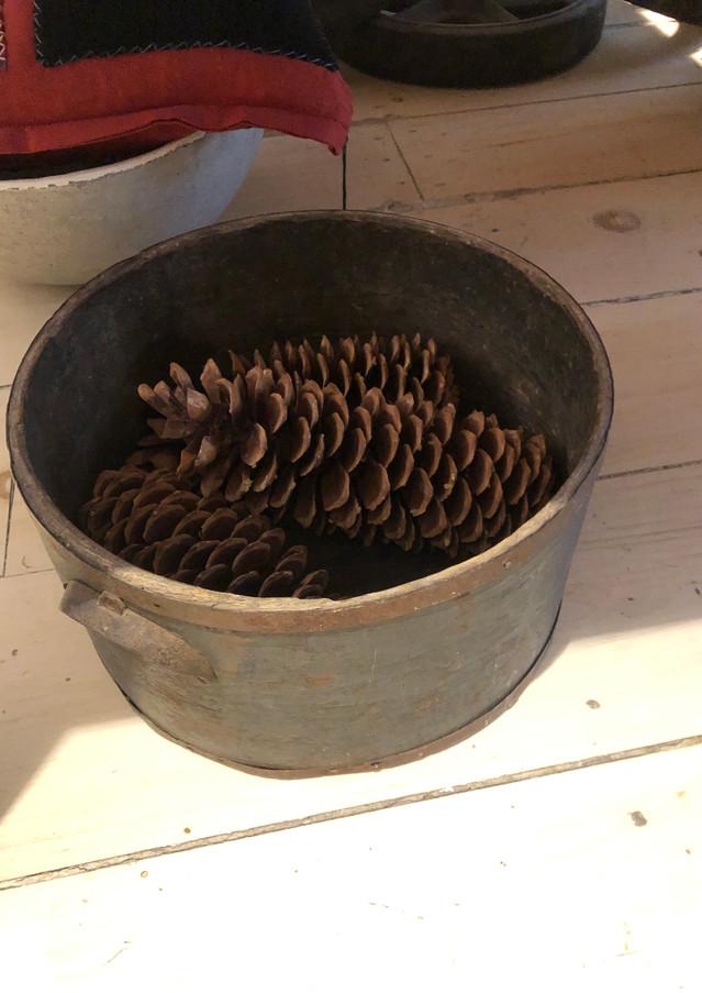 decoration de Noël, deco nature, nature