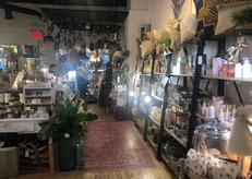 boutique Mimosa, plantes, éclairage, chandelles, literie, mimosa fleurs