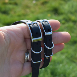 black biothane dog collar for small dogs