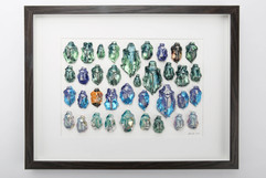 Beetle Collection Frame1.jpg