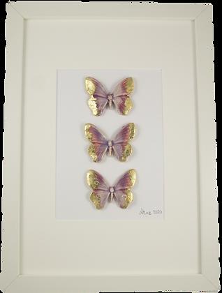 Large Framed Sorbet Butterflies