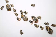 Bee Swarm1.jpg