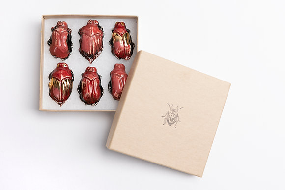 Box of Love Bugs
