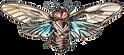 Moth1.png