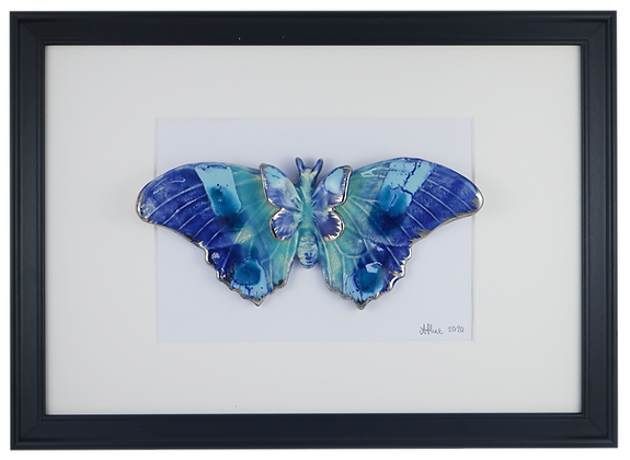 Dreamy Blues Butterfly