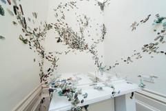 Entomology Cabinet.jpg