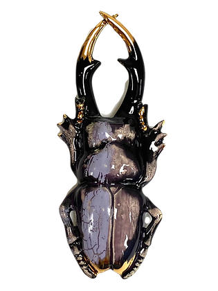 Spectre Galaxy Stagbeetle