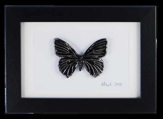 Sorceress butterfly