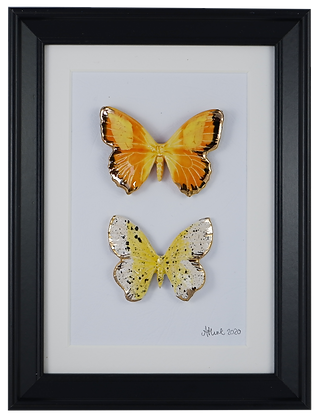 Golden Butterfly Collection
