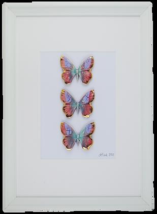 Radiance Butterflies