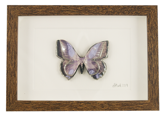 Framed Double Winged Butterfly